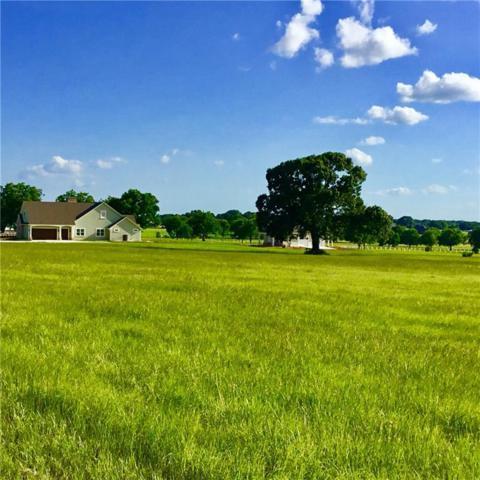 16115 County Road 424, Lindale, TX 75771 (MLS #13863630) :: Team Hodnett