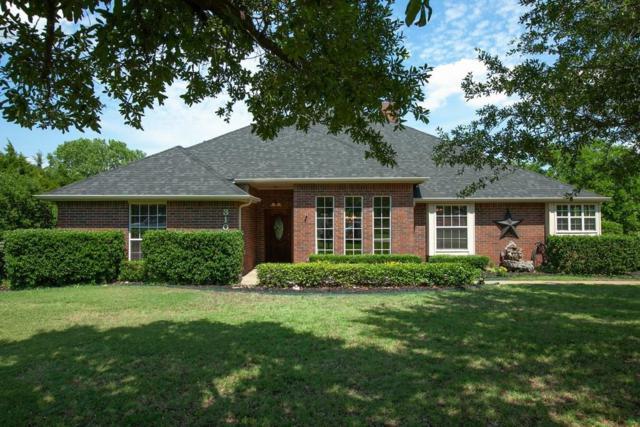 310 Meadow Knoll Drive, Double Oak, TX 75077 (MLS #13863833) :: North Texas Team | RE/MAX Advantage