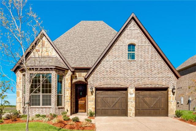206 Waterview Court, Hickory Creek, TX 75065 (MLS #13863857) :: Baldree Home Team