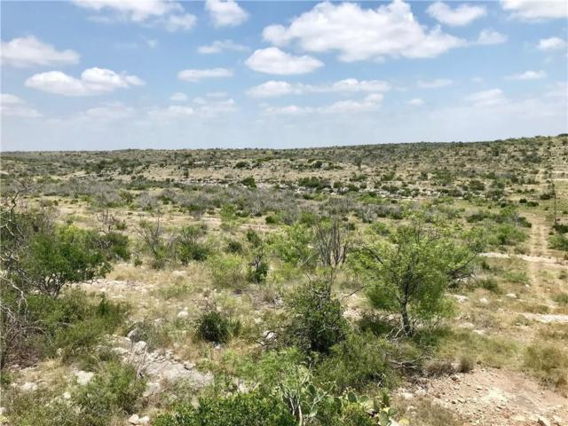 0000 State Highway 163, No City, TX 69541 (MLS #13865869) :: The Kimberly Davis Group