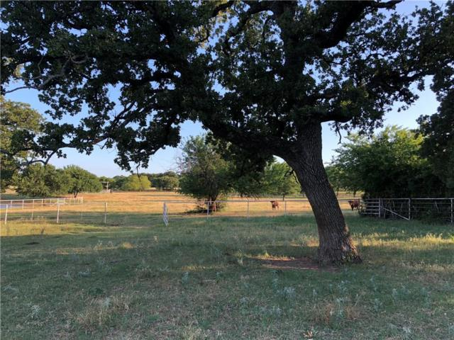 04 Frenchtown Road, Argyle, TX 76226 (MLS #13866330) :: The Heyl Group at Keller Williams