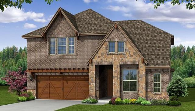 1228 Lake Falls Terrace, Lewisville, TX 75010 (MLS #13866391) :: Magnolia Realty