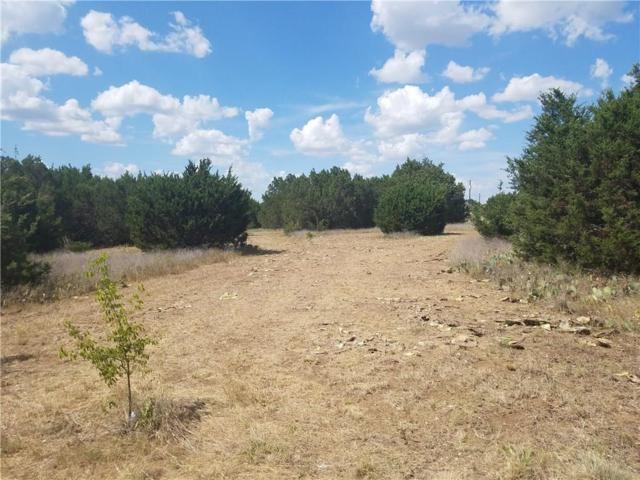 TBD W Prairie Ridge Court, Cleburne, TX 76033 (MLS #13866530) :: Team Hodnett