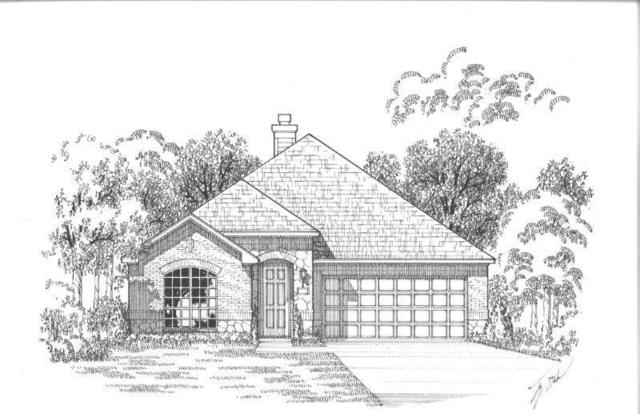 2005 Hubbard Park Lane, Prosper, TX 75078 (MLS #13867214) :: The Chad Smith Team
