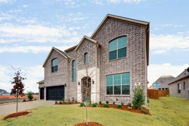 1012 Little Gull Drive, Forney, TX 75126 (MLS #13869479) :: Robbins Real Estate Group