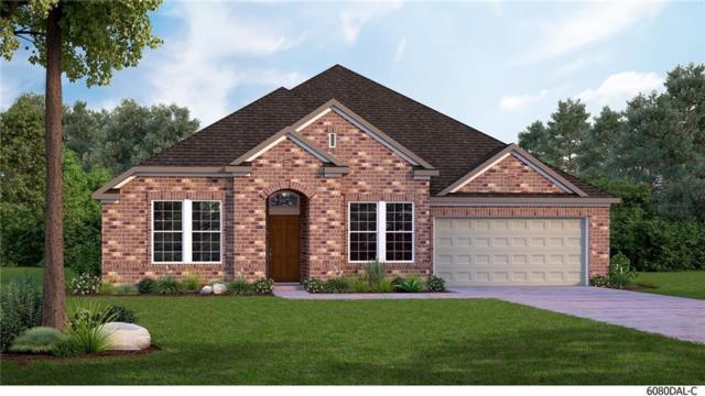 1431 Daisy Corner Drive, Celina, TX 75078 (MLS #13870373) :: Robinson Clay Team