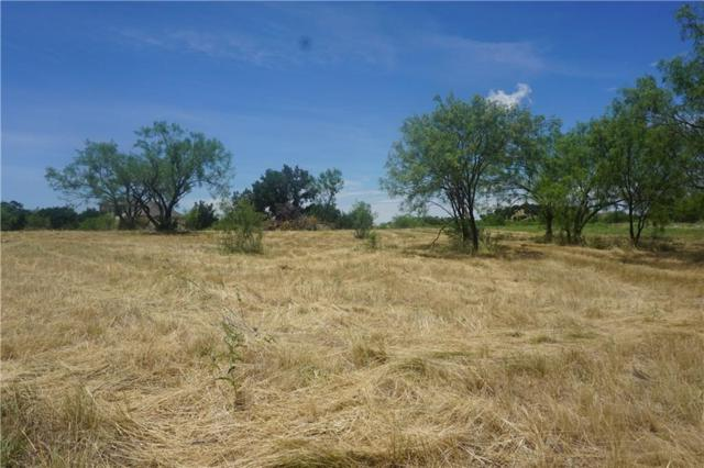 L1040 Frog Branch Court, Possum Kingdom Lake, TX 76449 (MLS #13870527) :: Steve Grant Real Estate