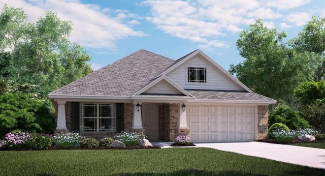 6136 Halton Drive, Celina, TX 75009 (MLS #13870751) :: Kimberly Davis & Associates