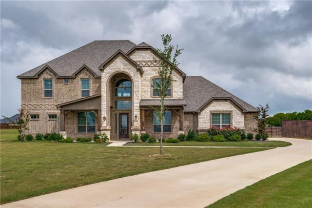 6000 Quartz Circle, Midlothian, TX 76065 (MLS #13871381) :: Pinnacle Realty Team
