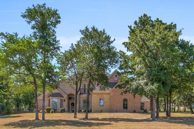 585 Sugartree Drive, Lipan, TX 76462 (MLS #13871395) :: Frankie Arthur Real Estate