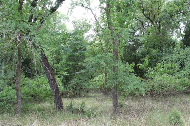112 Oakview Drive, Mabank, TX 75156 (MLS #13872312) :: Magnolia Realty