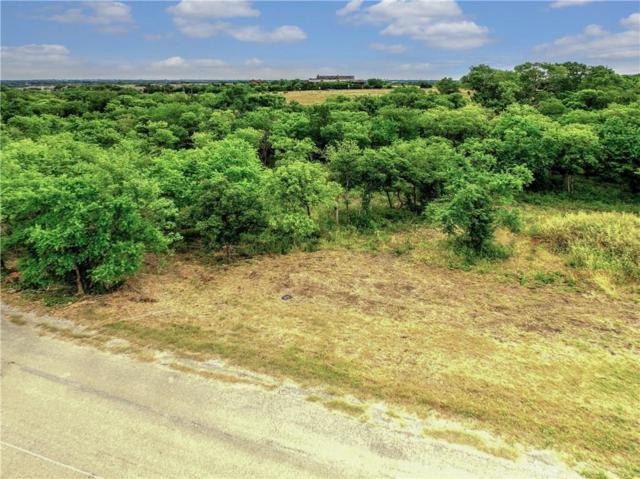 201 Ridgeview Drive, Sherman, TX 75092 (MLS #13872607) :: Team Hodnett