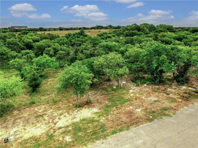 205 Ridgeview Drive, Sherman, TX 75090 (MLS #13872628) :: The Real Estate Station