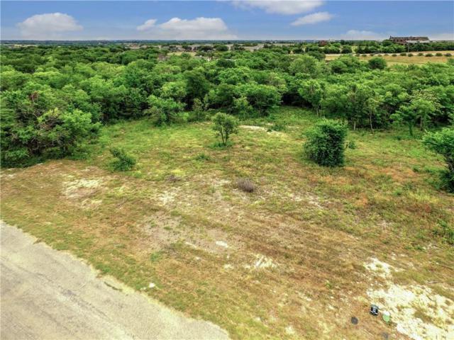 303 Ridgeview Drive, Sherman, TX 75090 (MLS #13872667) :: The Real Estate Station