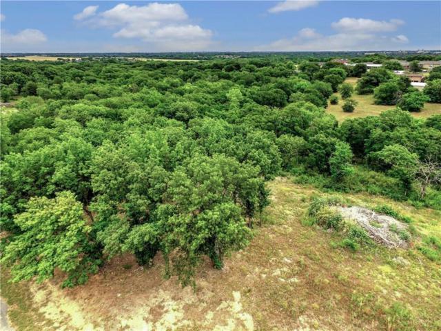 417 Ridgeview Drive, Sherman, TX 75090 (MLS #13872757) :: HergGroup Dallas-Fort Worth