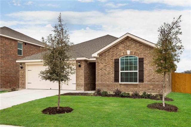 117 Collin Street, Anna, TX 75409 (MLS #13873754) :: Pinnacle Realty Team