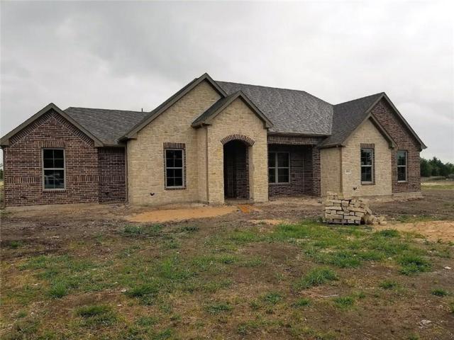10243 Private Road 5393 Road, Princeton, TX 75407 (MLS #13873782) :: Pinnacle Realty Team