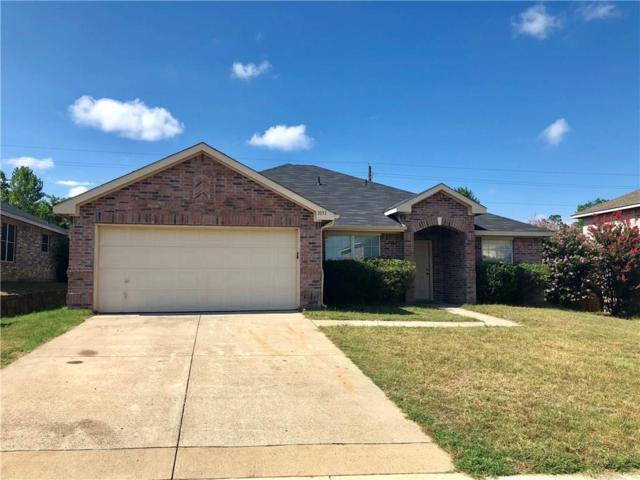 1031 N Cove Hollow Drive N, Cedar Hill, TX 75104 (MLS #13873914) :: Pinnacle Realty Team