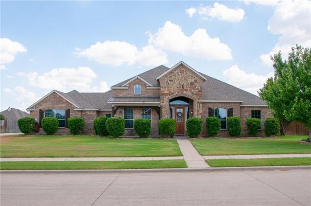 434 Panther Peak Drive, Midlothian, TX 76065 (MLS #13874111) :: Pinnacle Realty Team