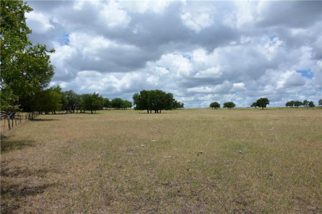 205 Cr 222, Goldthwaite, TX 76844 (MLS #13875573) :: Team Hodnett