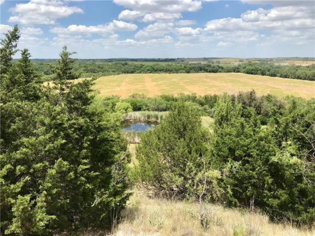 1100 County Road 235, Comanche, TX 76442 (MLS #13876878) :: RE/MAX Town & Country