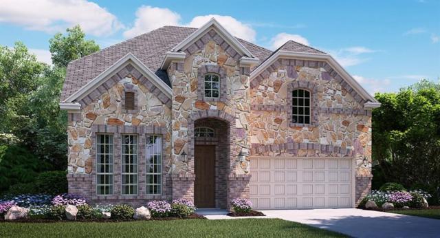 14215 Danehurst Lane, Frisco, TX 75035 (MLS #13877031) :: Team Hodnett