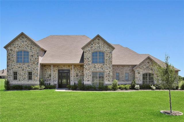 1670 Winding Creek Lane, Rockwall, TX 75032 (MLS #13878723) :: The Chad Smith Team