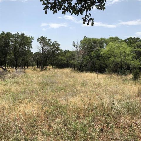 Lot 88 Colonial Drive, Possum Kingdom Lake, TX 76449 (MLS #13878762) :: Robbins Real Estate Group