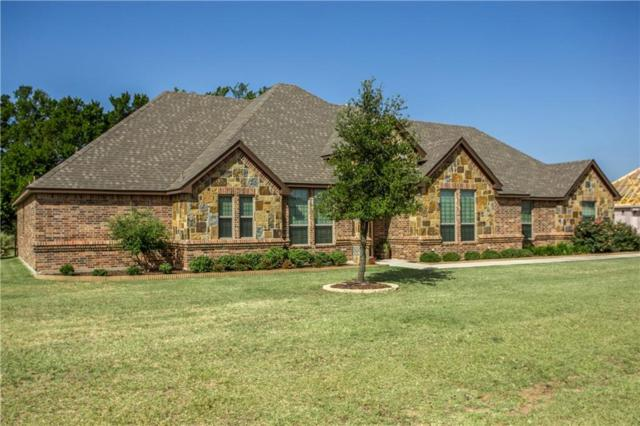 223 Ruby Drive, Brock, TX 76087 (MLS #13880001) :: Robbins Real Estate Group