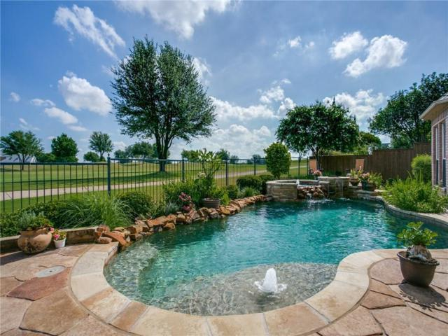 6609 Myrtle Beach Drive, Plano, TX 75093 (MLS #13881596) :: Frankie Arthur Real Estate
