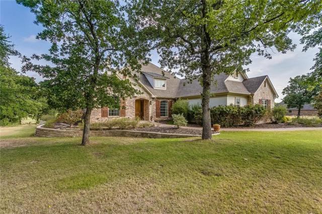 586 S Sugartree Drive, Lipan, TX 76462 (MLS #13882275) :: North Texas Team   RE/MAX Advantage