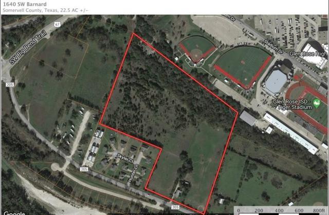 1604 SW Barnard Street, Glen Rose, TX 76043 (MLS #13882296) :: Potts Realty Group