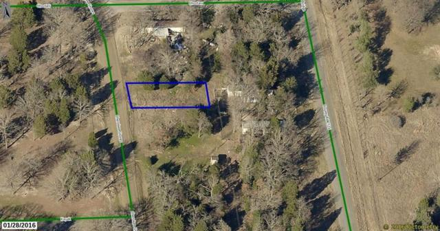 00 N Cherokee Shores Drive, Mabank, TX 75156 (MLS #13883550) :: The Real Estate Station