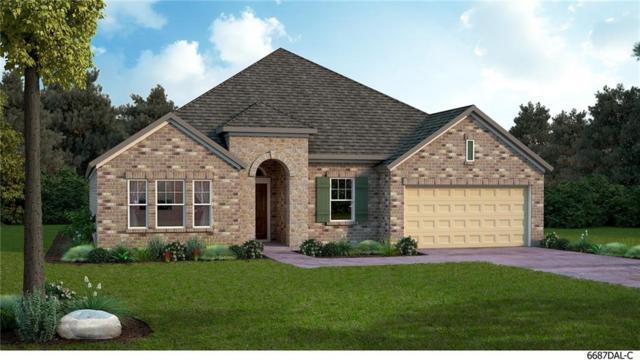301 Fawn Mist Drive, Prosper, TX 75078 (MLS #13884511) :: Team Hodnett