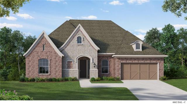 241 Fawn Mist Drive, Prosper, TX 75078 (MLS #13884533) :: Team Hodnett
