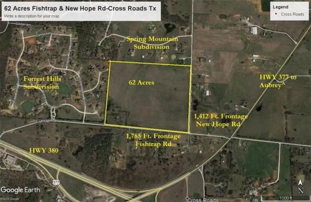 2400 Fishtrap Road, Cross Roads, TX 76227 (MLS #13886261) :: RE/MAX Pinnacle Group REALTORS