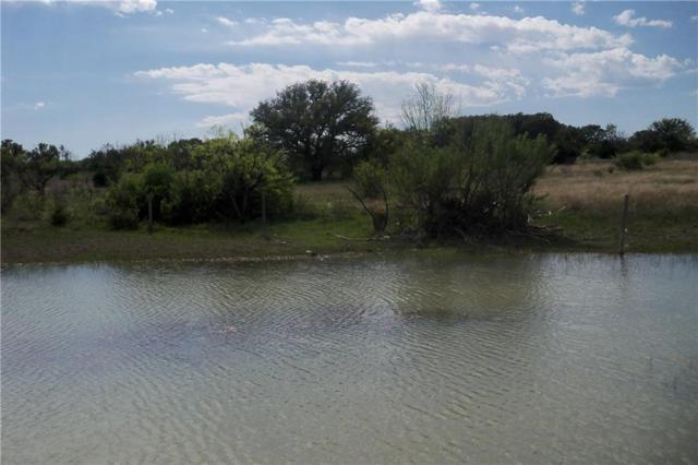 4501 Cr 155 N, Bangs, TX 76823 (MLS #13886709) :: Team Hodnett
