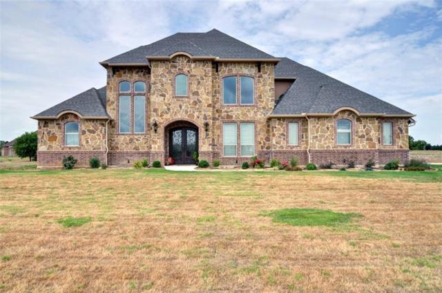 2029 Blue Ridge Drive, Cedar Hill, TX 75104 (MLS #13886957) :: The Chad Smith Team