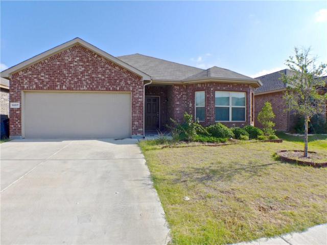 1057 Doe Meadow Drive, Fort Worth, TX 76028 (MLS #13887661) :: Team Hodnett