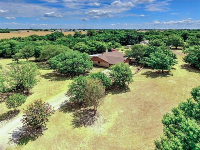 241 White Creek Drive, Van Alstyne, TX 75495 (MLS #13887837) :: RE/MAX Landmark