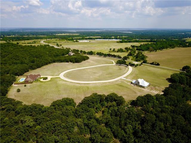 186 Texoma Bluffs Circle, Gordonville, TX 76245 (MLS #13888026) :: The Heyl Group at Keller Williams