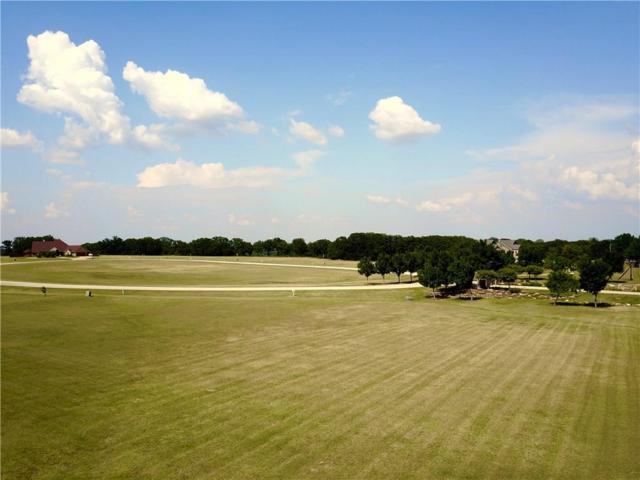 176 Texoma Bluffs Circle, Gordonville, TX 76245 (MLS #13888039) :: The Heyl Group at Keller Williams