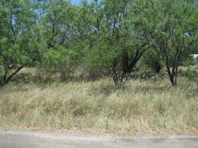 TBD Kingsfalls, Granite Shoals, TX 78654 (MLS #13888089) :: Team Hodnett