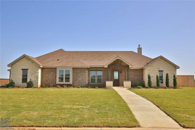 202 Tierra Court, Abilene, TX 79602 (MLS #13888156) :: The Paula Jones Team | RE/MAX of Abilene