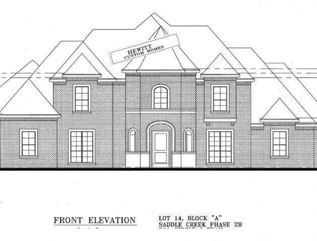 911 Circle J Trail, Prosper, TX 75078 (MLS #13888669) :: Real Estate By Design