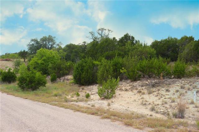 1855 Beacon Lake Drive, Bluff Dale, TX 76433 (MLS #13888823) :: Team Hodnett