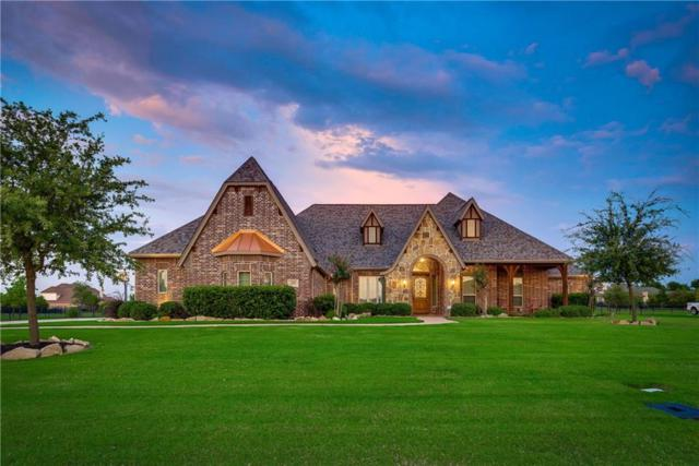 610 Webb Lane, Lucas, TX 75002 (MLS #13889374) :: Frankie Arthur Real Estate