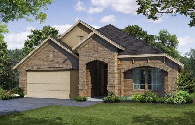 113 Sonterra Court, Waxahachie, TX 75167 (MLS #13889735) :: The Real Estate Station