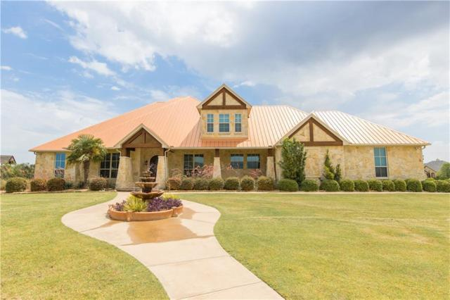 18022 Coolmeadow Lane, Forney, TX 75126 (MLS #13890133) :: RE/MAX Landmark
