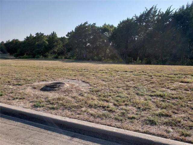 100 Royal Vista Drive, Cedar Hill, TX 75104 (MLS #13890709) :: Team Hodnett